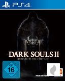 Dark Souls II: Scholar of the First Sin [DLCs nur als Code] für PS4